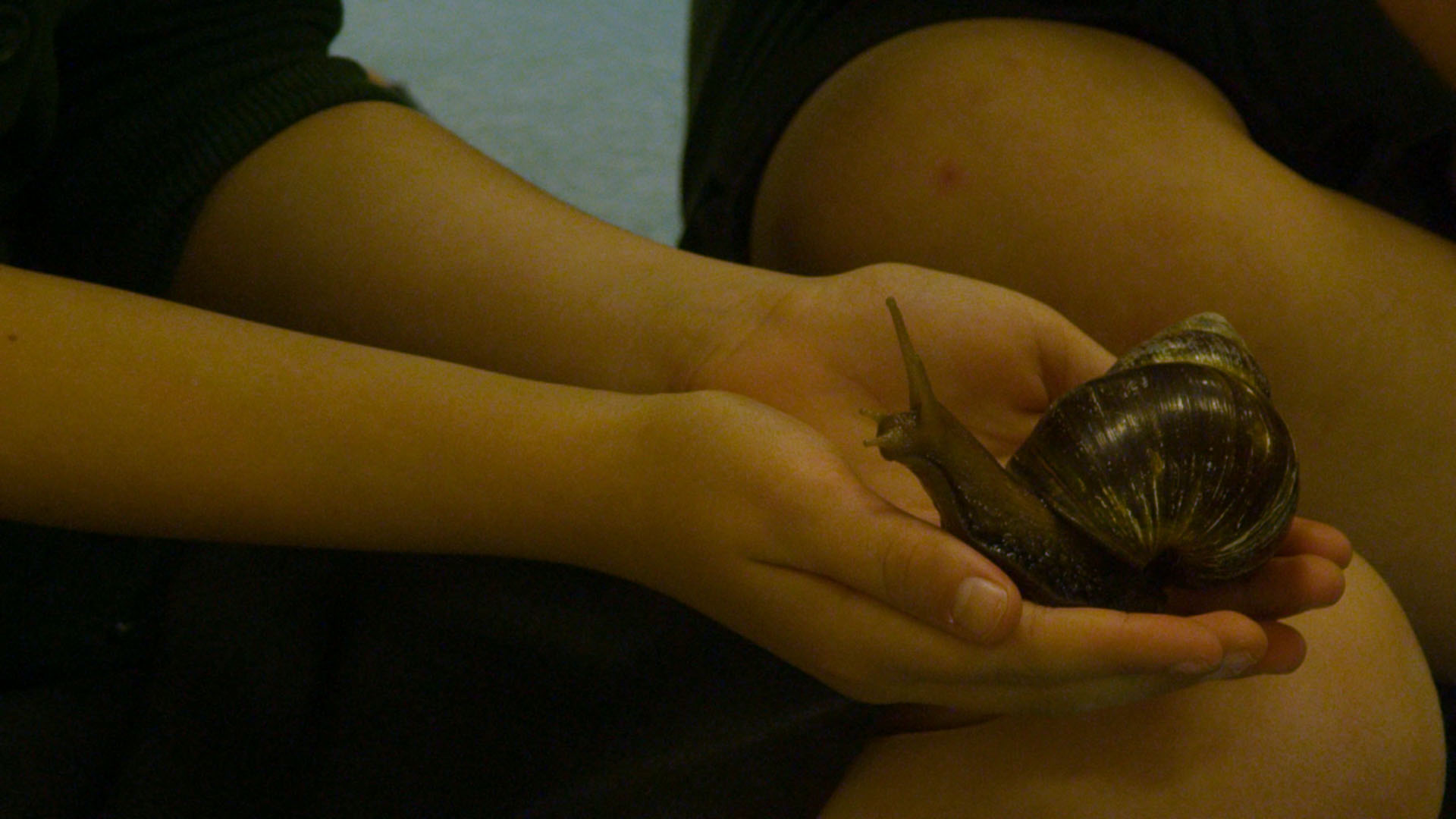 School children holding large snail