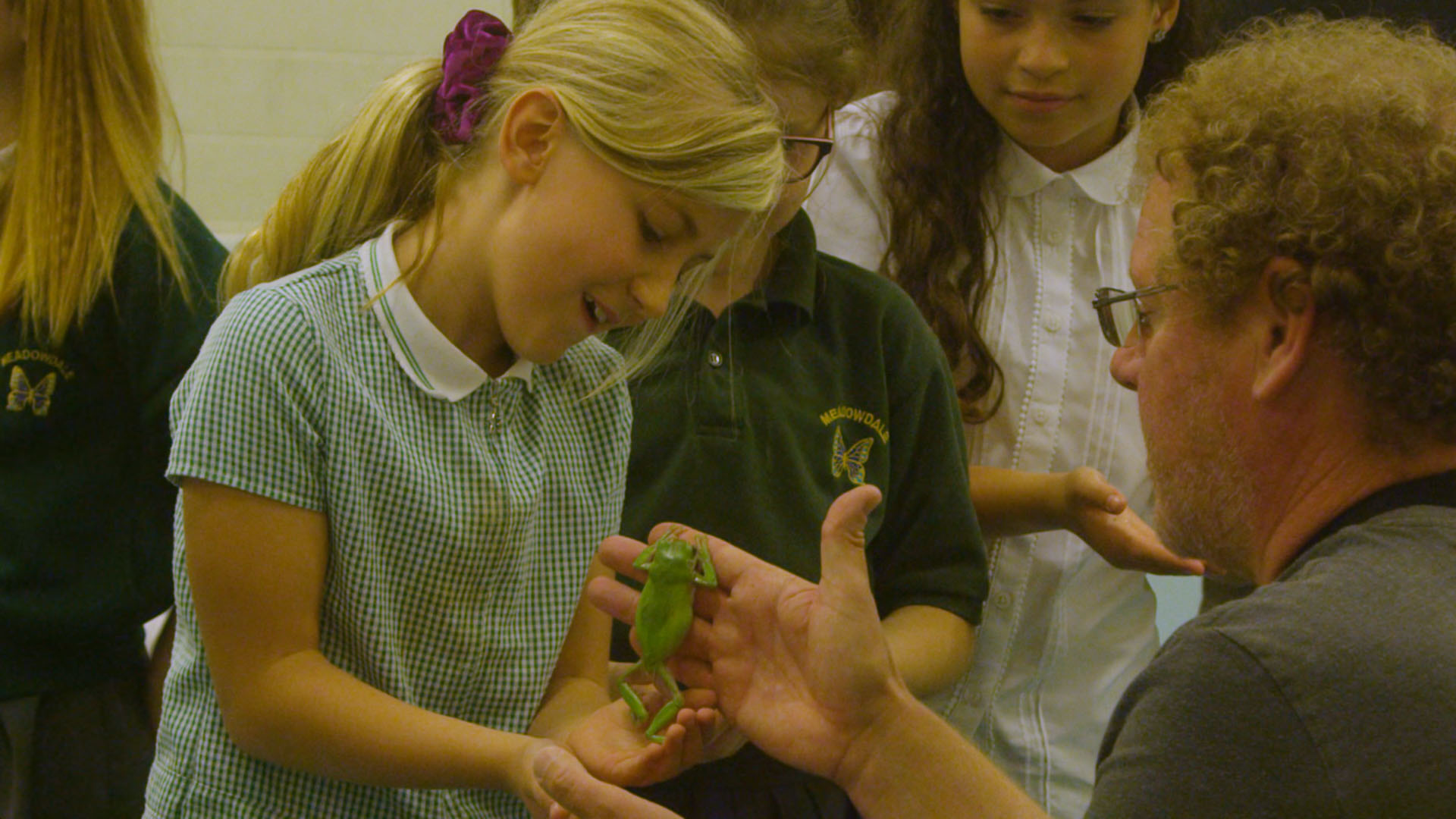 Teacher and pupil looking at a green frog